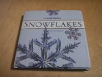 Snowflakes_1